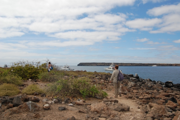 North Seymour Island walk