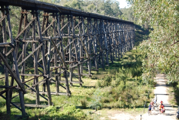 Cyclists gazing up at the old trestle bridge on the East Gippsland Rail Trail