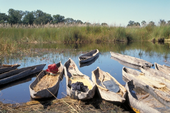 Mokoros in the Okavango Delta, Botswana
