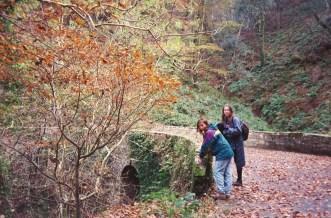 South West Coast Path near Clovelly