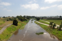 Flooded Dandenong Creek