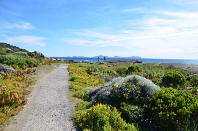 The trail from Squeaky Beach to Tidal River