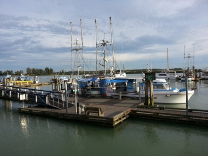 Steveston Harbour