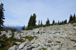Alpine Walk on Blackcomb Mountain