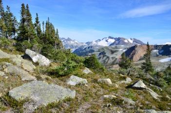 Half Note Trail