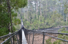 Huon River swinging bridge