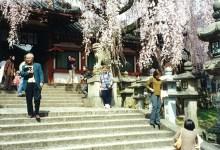 Karen in Nara Park