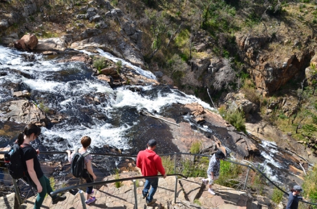 Walking track alongside MacKenzie Falls