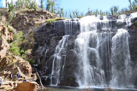 The steep steps alongside MacKenzie Falls