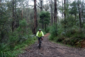 Pete on the Walhalla Goldfields Rail Trail