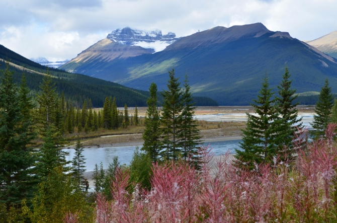 Scenery from Icefields Parkway, Canadian Rockies
